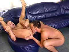 Well hung studs have fiery assfuck on leather bed