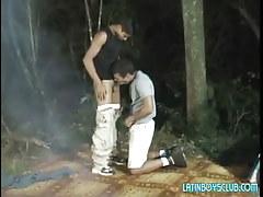 Latin gay homosexuals suck in dark forest